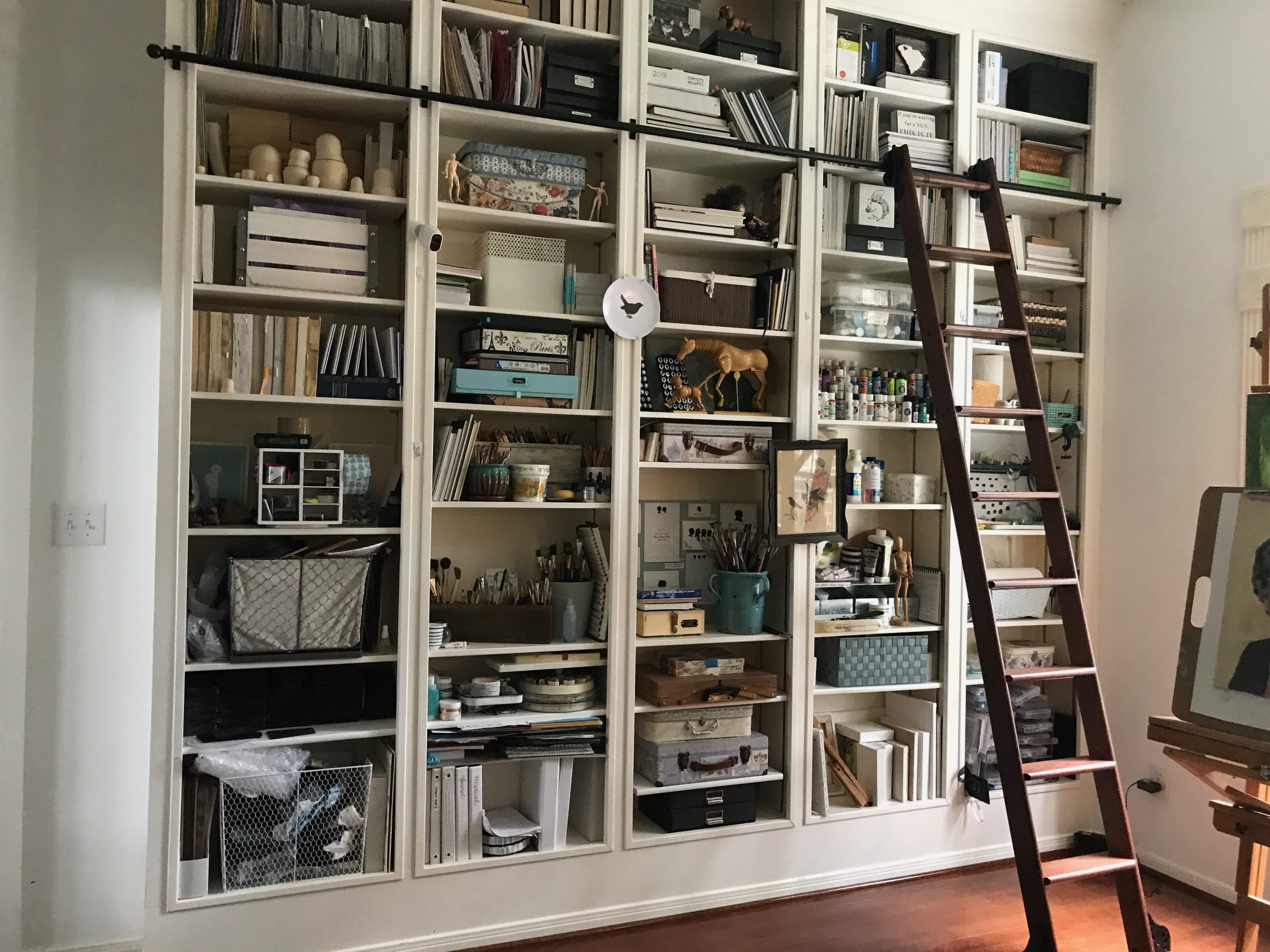 library wall with rolling ladder